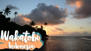 Wakatobi Indonesia Feature image with text over sunset picture