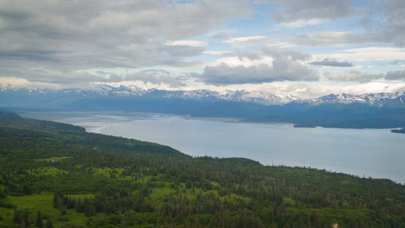 View from the hills outside of Homer looking down into Kachemak Bay in alaska
