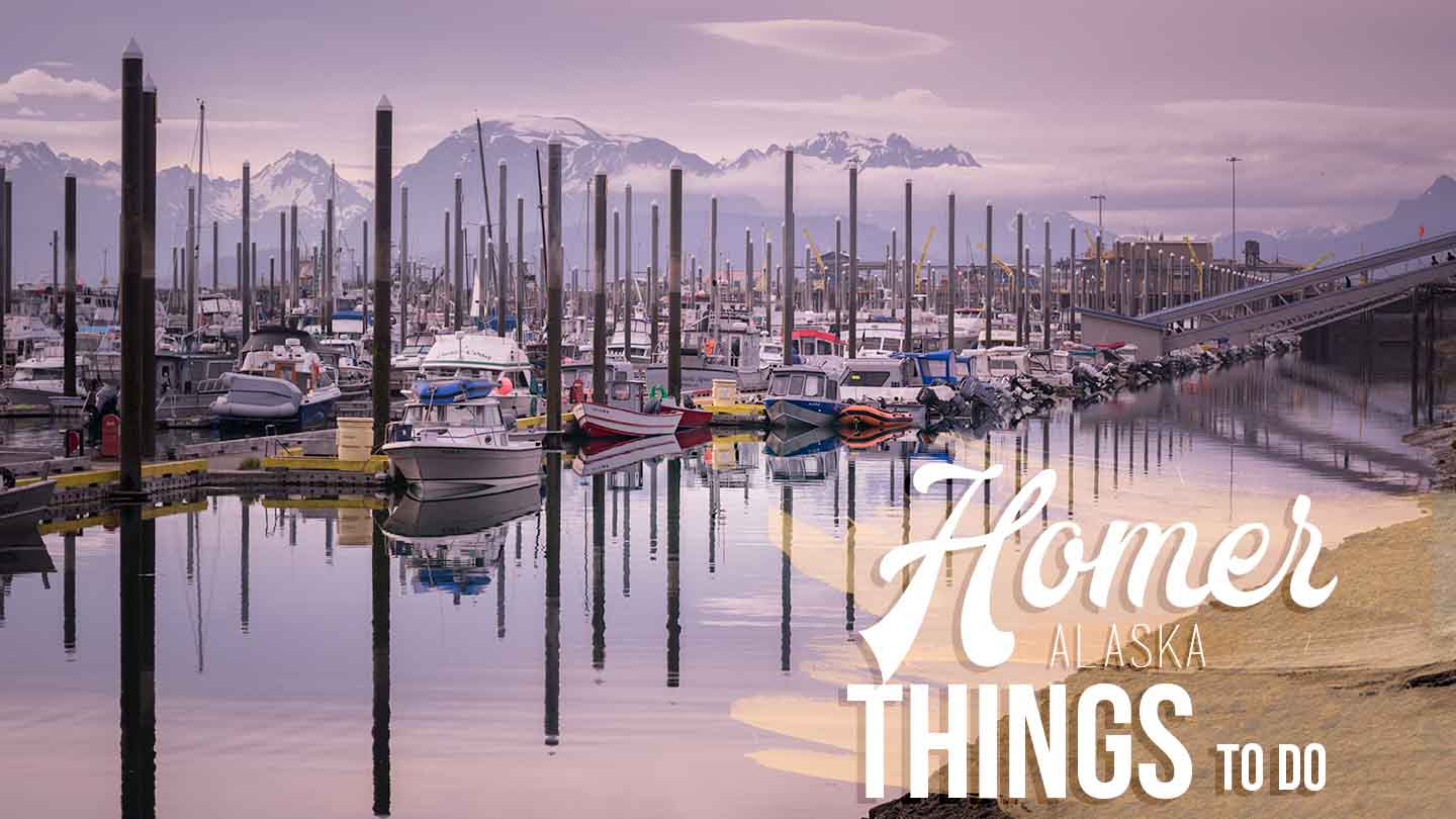 morning sunrise in Homer harbor featured image for things to do in Homer Alaska