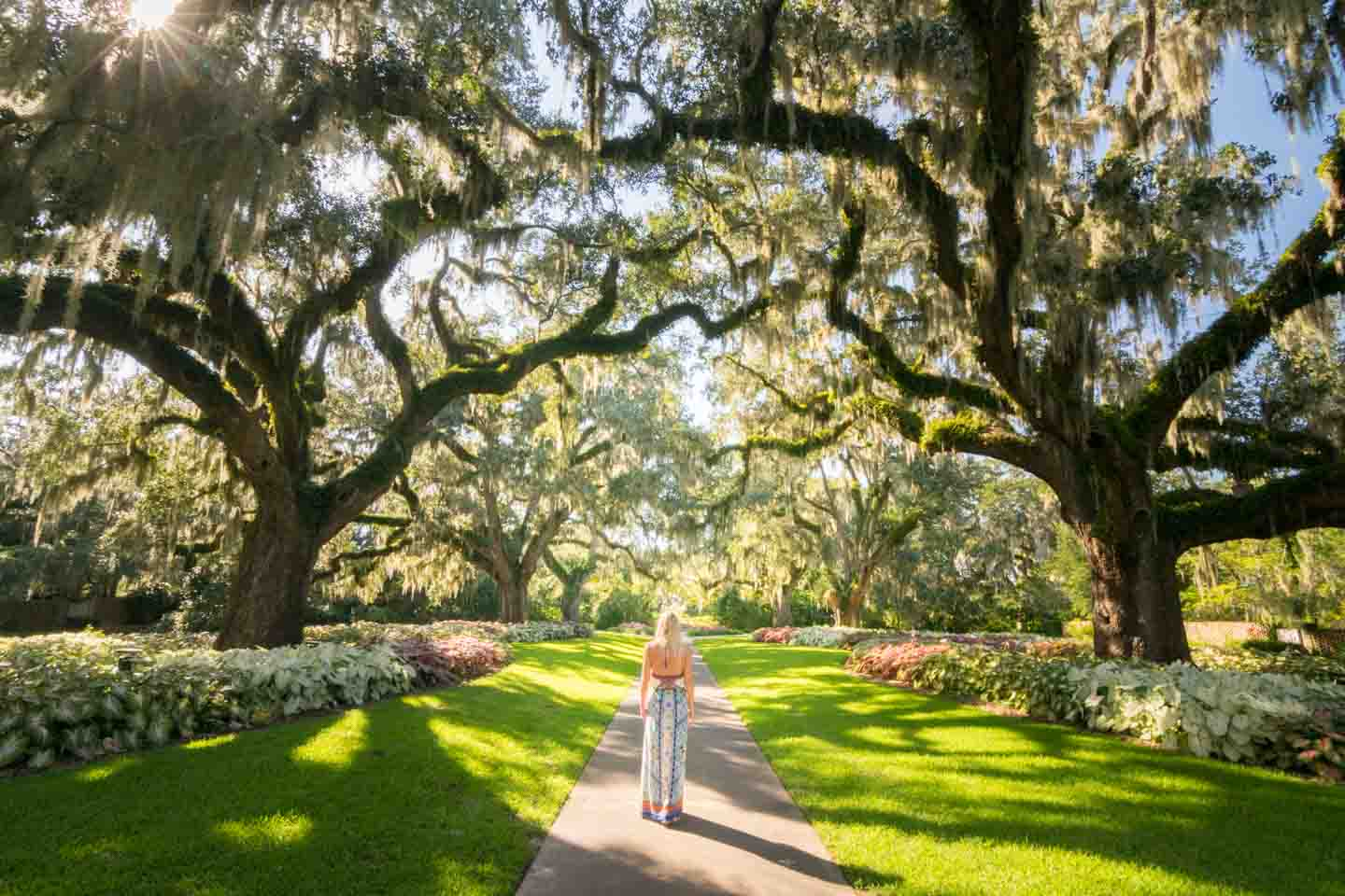 Myrtle Beach Getaway Things to do - Brookgreen Gardens - Live Oak ...