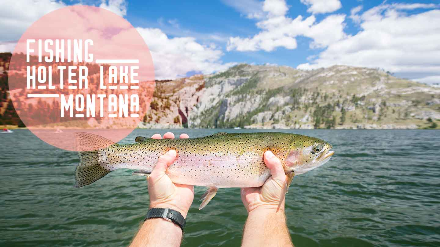 Rainbow trout in Holter Lake Montana fishing trip - featured image