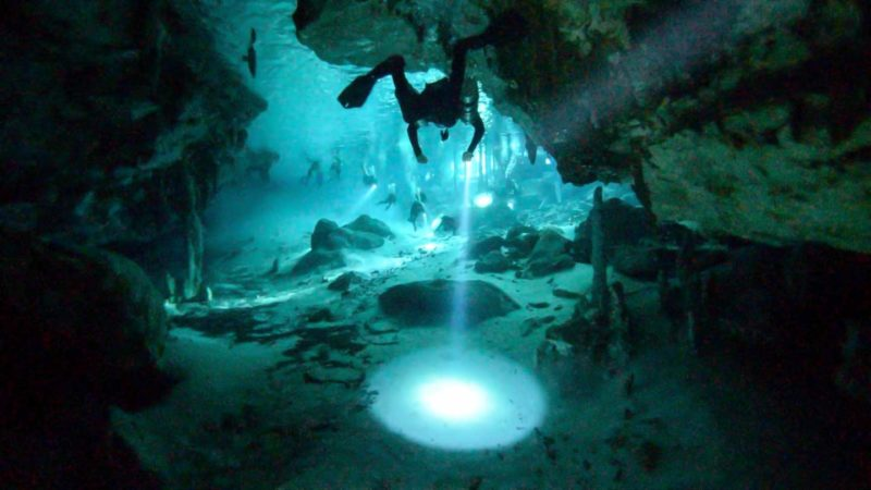 divingin Dos Ojos Cenote - Best cenotes in Tulum - Diver swimming with a flashlight during a cave dive