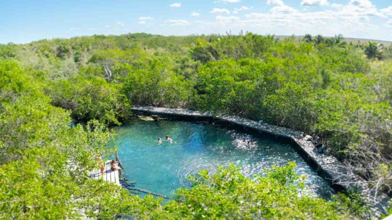 Large open sinkhole - Cenote Yalahau Hoyo Negro - Top things to do in Holbox