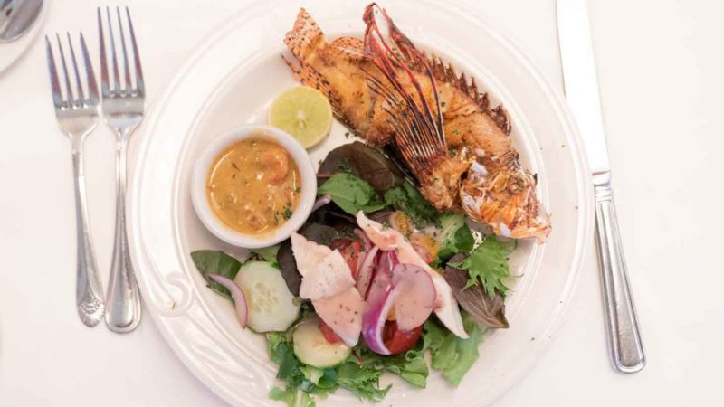 Plate of lion fish at Chef Michales in the Florida Keys - Top places to eat