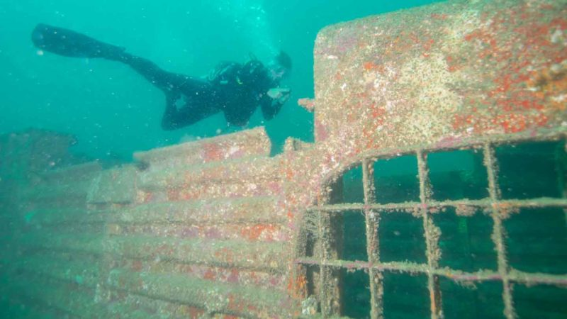 diver swimming near the Spiegel Grove Ship wreck in the florida keys - Top activities for road trippers