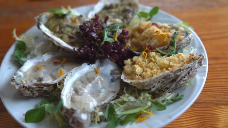 Plate of Oysters at Gabriel Archer Tavern loacted on the Williamsburg winery - Top rated places to eat